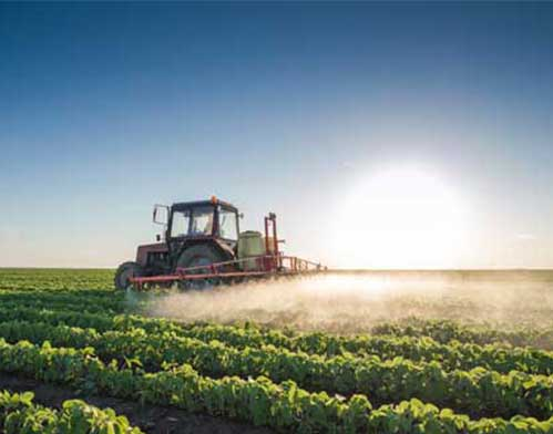 Pesticides Can Affect Generations