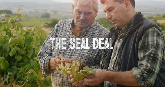 The Seal Deal - Certifications Matter