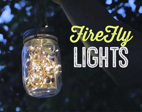Firefly Lights Video