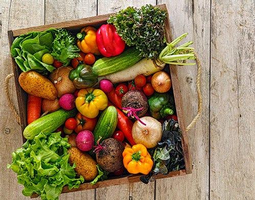 Organic veggie glossary