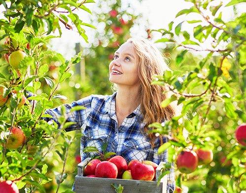 4 Reasons to Go Organic