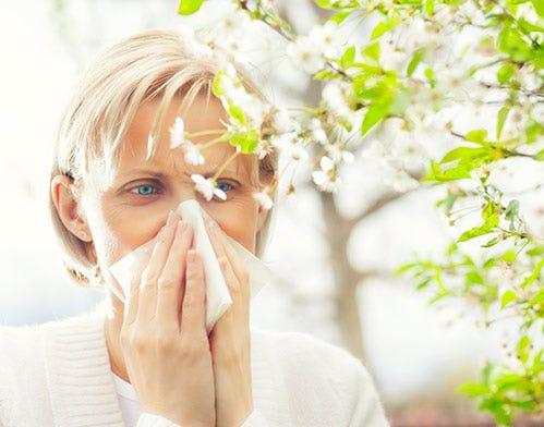 natural strategies seasonal allergies