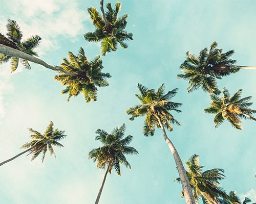 The Only Playlist You'll Need to Fully Embrace Summer