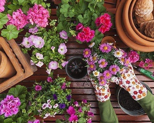 5 Ways to Grow Excited for Spring