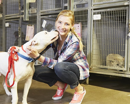 6 Ways to Unleash Your Heart for Be Kind to Animals Week