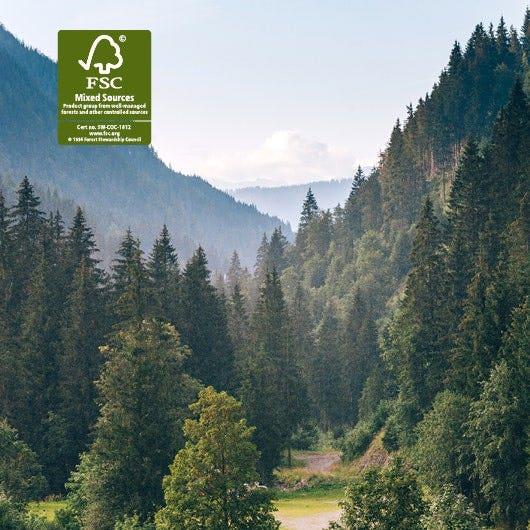 FSC – Forests For All Forever