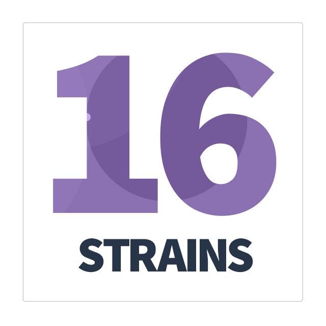 dr formulated probiotics mood 16 probiotic strains
