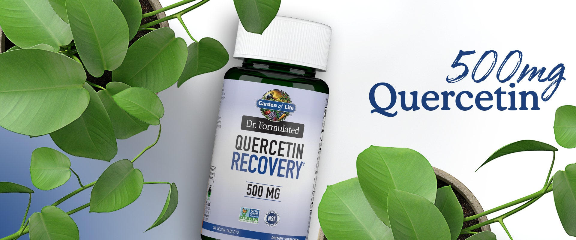 probiotics dr formulated quercetin recovery 500mg