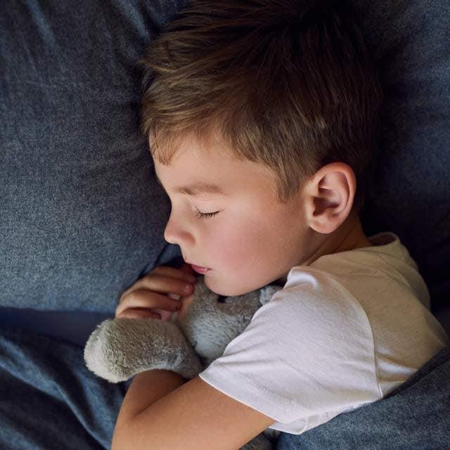garden of life elderberry sleep for kids by mykind organics